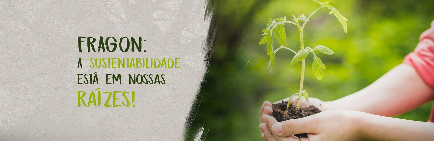 FRAGON: A sustentabilidade está em nossas raízes!